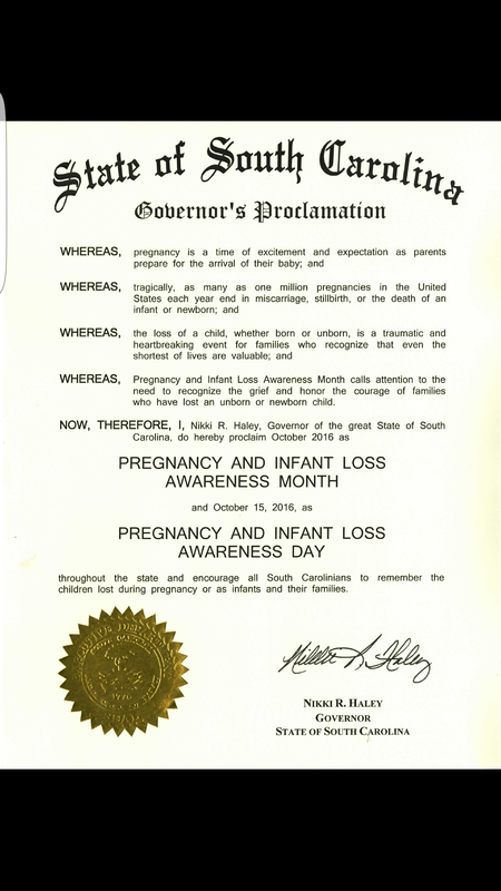 SC pregnancy infant loss day